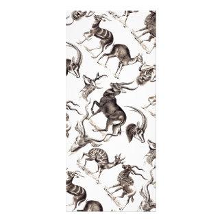 Ernst Haeckel Antilopina Rack Card