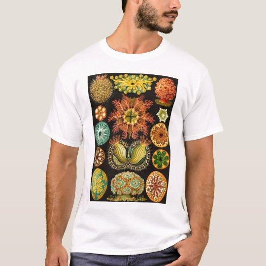 Ernst Haeckel - Ascidiae T-Shirt