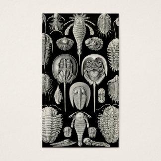 Ernst Haeckel Aspidonia Business Card