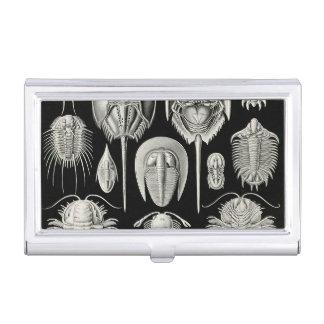 Ernst Haeckel Aspidonia Business Card Holder