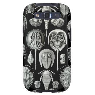 Ernst Haeckel - Aspidonia Galaxy S3 Cover