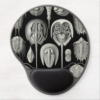 Ernst Haeckel Aspidonia Gel Mouse Pad