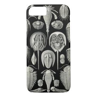 Ernst Haeckel Aspidonia iPhone 7 Case