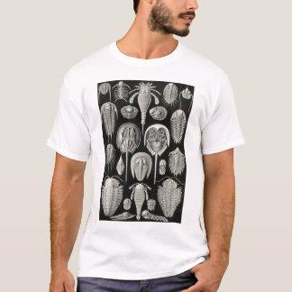 Ernst Haeckel - Aspidonia T-Shirt