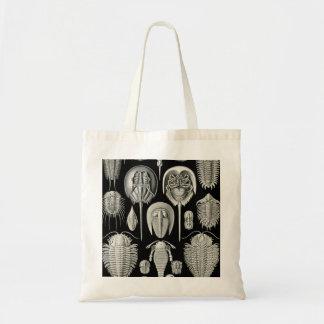 Ernst Haeckel Aspidonia Tote Bag