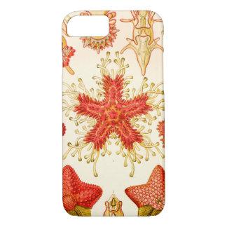 Ernst Haeckel Asteridea Funda iPhone 7
