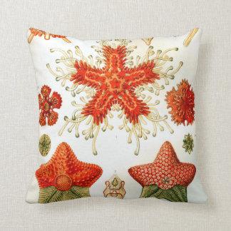 Ernst Haeckel Asteridea starfish Throw Pillow