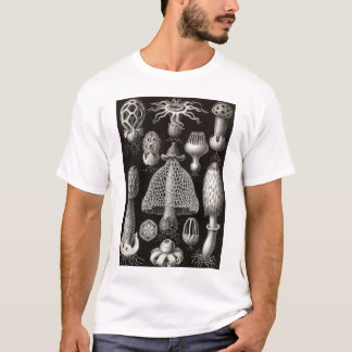 Ernst Haeckel - Basimycetes Mushrooms T-Shirt