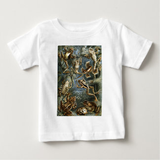 Ernst Haeckel Batrachia Baby T-Shirt