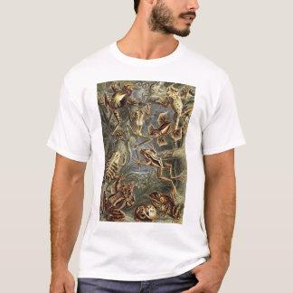Ernst Haeckel - Batrachia Frogs T-Shirt