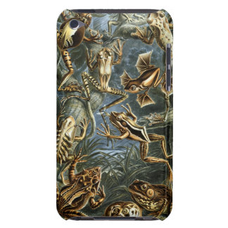 Ernst Haeckel - Batrachia iPod Touch Covers