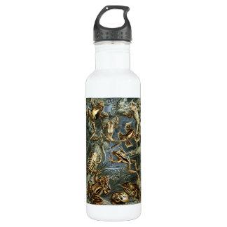 Ernst Haeckel - Batrachia Stainless Steel Water Bottle