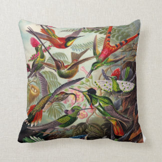 Ernst Haeckel Birds two sided pillow