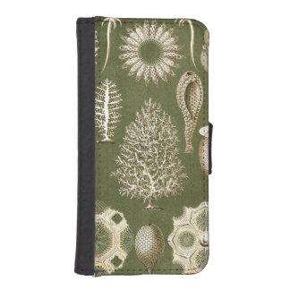 Ernst Haeckel Calcispongiae iPhone SE/5/5s Wallet Case