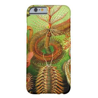 Ernst Haeckel Chaetopoda Funda Para iPhone 6 Barely There
