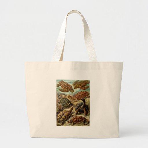 Ernst Haeckel Chelonia Large Tote Bag