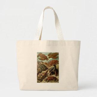 Ernst Haeckel - Chelonia Large Tote Bag