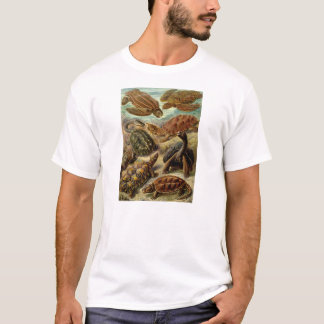 Ernst Haeckel - Chelonia T-Shirt