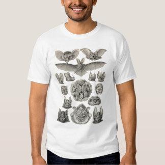 Ernst Haeckel - Chiroptera Bats T Shirt