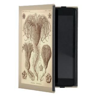 Ernst Haeckel Crinoids- Full Page Case For iPad Mini
