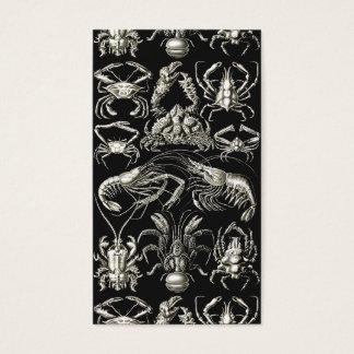 Ernst Haeckel Decapoda Business Card
