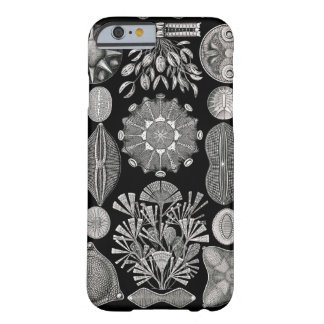 Ernst Haeckel  Diatomea Barely There iPhone 6 Case