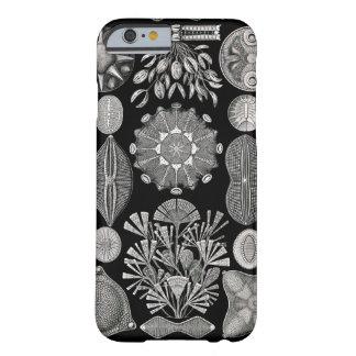 Ernst Haeckel Diatomea Funda Para iPhone 6 Barely There
