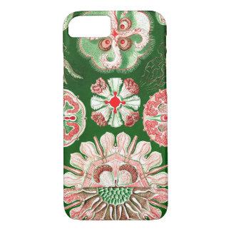 Ernst Haeckel Discomedusae (Aurelia) iPhone 8/7 Case