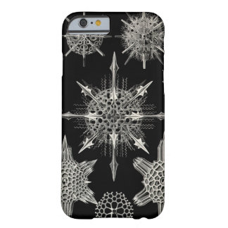 Ernst Haeckel el   Acanthophracta Funda Barely There iPhone 6