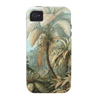 Ernst Haeckel - Filicinae iPhone 4 Cover