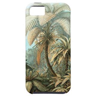Ernst Haeckel - Filicinae iPhone 5 Cases