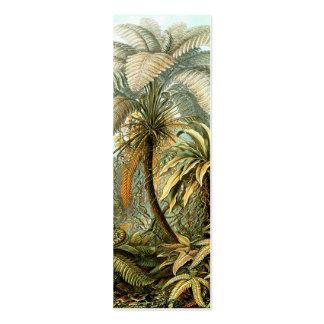 Ernst Haeckel Filicinae Mini Business Card