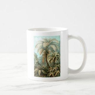 Ernst Haeckel Filicinae Coffee Mug
