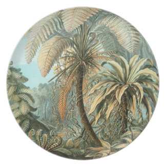 Ernst Haeckel - Filicinae Party Plates
