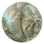 Ernst Haeckel - Filicinae Plato Para Fiesta