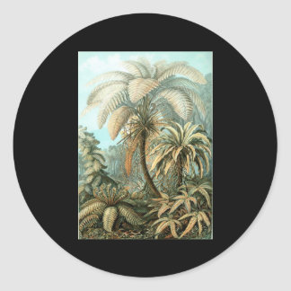 Ernst Haeckel Filicinae Round Stickers
