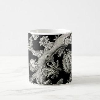 Ernst Haeckel Gorgonia Coffee Mug