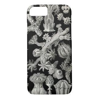 Ernst Haeckel Gorgonia Funda iPhone 7