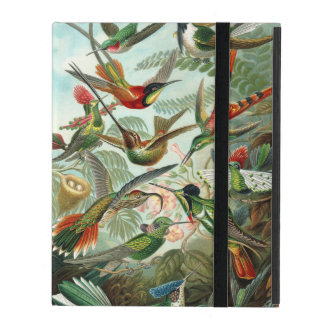 Ernst Haeckel ~ Hummingbirds iPad Cover