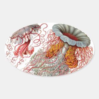 Ernst Haeckel - Kuntsformen der Nature Product Oval Sticker