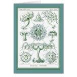 Ernst Haeckel - Kuntsformen der Nature - Tafel 18 Greeting Card
