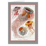 Ernst Haeckel - Kuntsformen der Nature - Tafel 8 Greeting Card
