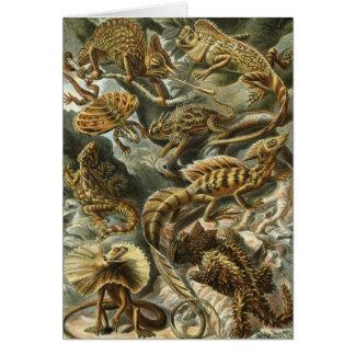 Ernst Haeckel - Lacertilia Card