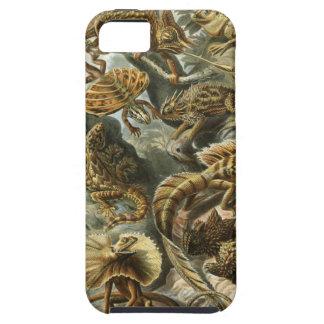 Ernst Haeckel - Lacertilia iPhone 5 Cases
