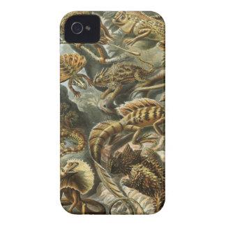 Ernst Haeckel - Lacertilia iPhone 4 Case-Mate Cases