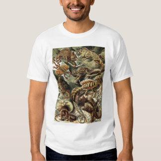 Ernst Haeckel - Lacertilia Lizards T-shirt