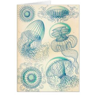 Ernst Haeckel | Leptomedusa | Thecate Hydroids Card
