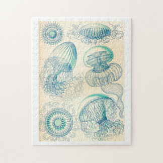 Ernst Haeckel | Leptomedusa | Thecate Hydroids Jigsaw Puzzle