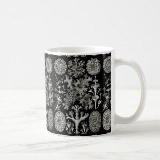 Ernst Haeckel Lichens Coffee Mug