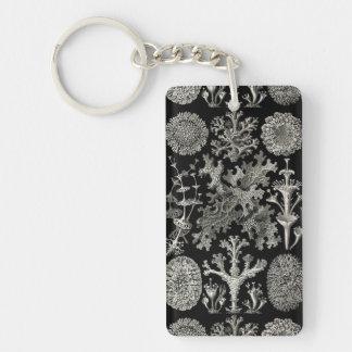 Ernst Haeckel Lichens Double-Sided Rectangular Acrylic Keychain